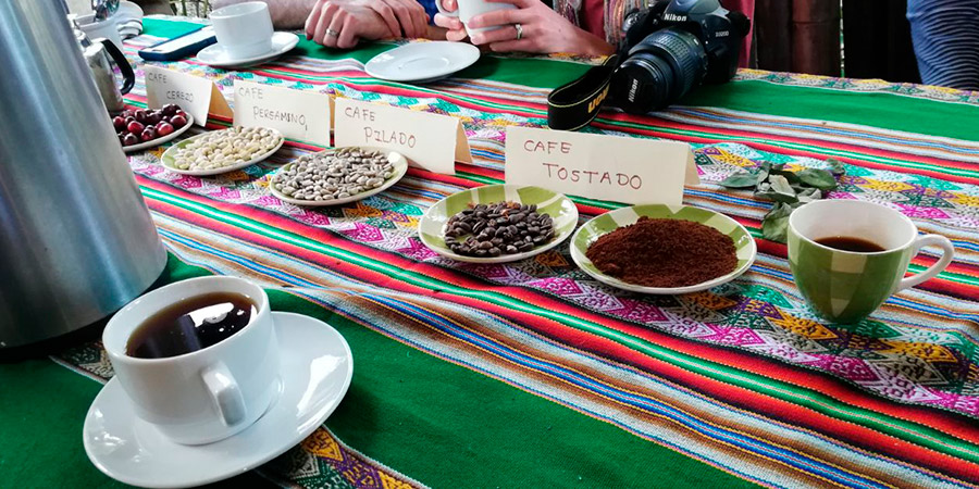 Coffee and/or Cocoa Farm Tour 2D